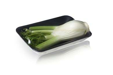 Foodtainer - fennel